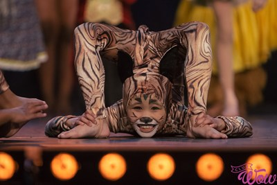 gymnastics-acrobatics